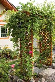 Small Picture Garden Design Garden Design with Flowering Vines and Vining