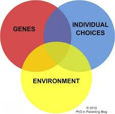nature vs nurture debate psychology essay question movie review  nature versus nurture