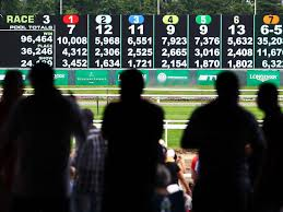 Sports Betting Odds Chart How To Calculate Horse Racing Betting Odds And Payoffs