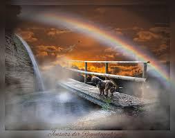Jenseits Der Regenbogenbrücke Wenn Mein Hund Gestorben Ist