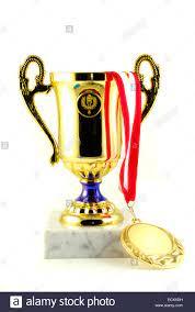 Gold Cup und Medaille gewinnen Konzept ...