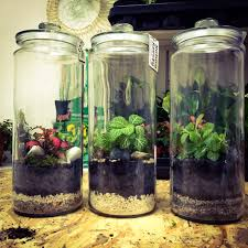 Diy Planten Terrarium Maak In 6 Stappen Je Mini Ecosysteem