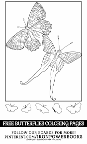 Printable Butterfly Coloring Pages Ironpowerbooks Very