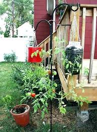 upside down tomato planter home depot hanging tomato planters upside down tomato planter ideas hanging tomato upside down