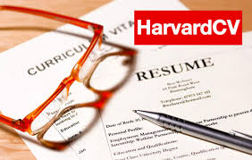 what should be on a cover letter for a resume design and edit your resume cv cover letter and linkedin