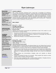 It Asset Management Resume Sample Professional Template It