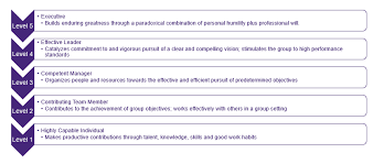 Qualities Of A Good Team Leader Project Leadership 3 Insights Into Leading A Team Encore