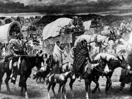 cherokee removal new encyclopedia the trail of tears