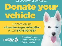 humane society ads. Fine Ads Inside Humane Society Ads T