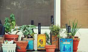 vintage-tin-herb-planter-2