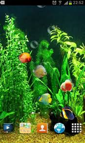 3d live wallpaper for android mobile free download. Exellent Mobile Fish Tank 3D Live Wallpaper Throughout 3d For Android Mobile Free Download R