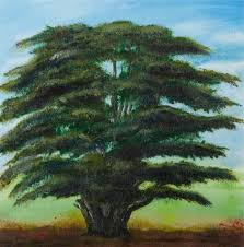 The Birstall Cedar Tree | Art UK