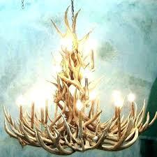 moose antler chandelier deer ceiling light antler lights chandelier moose fan moose antler chandelier canada