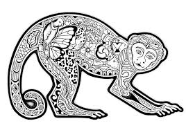Small Picture special monkey coloring pages top kids coloring downloads design