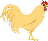 chicken clipart. Fine Chicken Chicken Clipart Size 92 Kb Throughout Chicken Clipart P