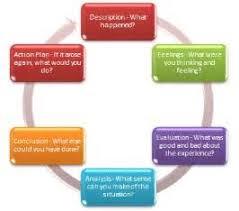 an essay on mentorship nursing edu essay