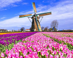 Holland is a geographical region2 and former province on the western coast of the netherlands.2 the name holland is for faster navigation, this iframe is preloading the wikiwand page for holland. Holland To Disappeare Travel Trade Outbound Scandinavia