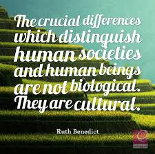Quotes About Culture Interesting 48 Insightful Quotes About Culture Textappeal