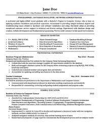 Programmer | Database Developer | Network Administrator Resume