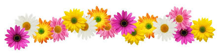 Free Flower Border Clip Art, Download Free Flower Border Clip Art png  images, Free ClipArts on Clipart Library
