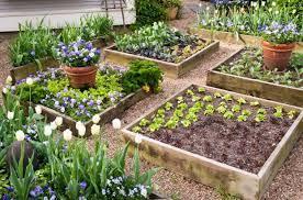 best soil for raised vegetable garden beds