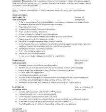 Tax Accountant Resume Enchanting Payroll Accountant Resume Vaydileeuforicco