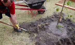 building a garden bed. Person Using A Mattock To Remove The Grass Building Garden Bed