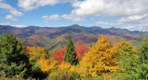 mt mitchell fall color