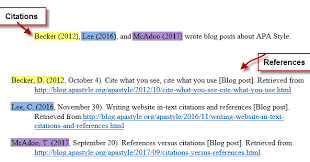 apa style blog references citations versus references