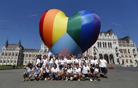 Interested in how the celebration of love, diversity and the demonstration. Pro Lgbt Protest Against New Hungarian Law Euronews