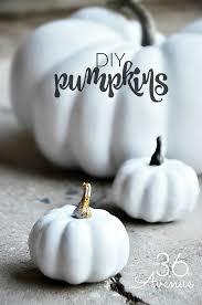 white pumpkin tutorials at the36thavenue com
