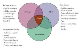 Gender Venn Diagram Global Distribution Public Health And Clinical Impact Of