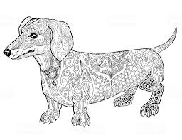 Dachshund Coloring Pictures With Dachshund Dog Coloring Page Free