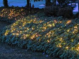 backyard string lighting. pachysandra english ivy and other dense sturdy plants work best for adding lights to your garden landscape according this blogger backyard string lighting b