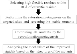 Enzyme Chart The Flow Chart Of The Acs Strategy To Improve Enzyme