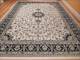all modern area rugs dash and albert inexpensive free clearance kids carpets round home decorators