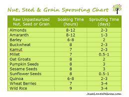 24 Unique Soaking Times For Nuts And Seeds Chart