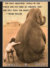 Pin By Angela Thompson On Animal Likes Elephant Quotes Picture