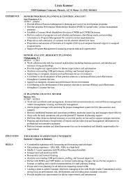 Senior Analyst Planning Resume Samples Velvet Jobs