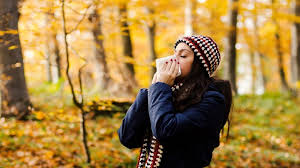 8 Tips for Fall Allergy Relief | Everyday Health