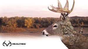 Outdoor hunting backgrounds High Resolution Res 1920x1200 Allwallpaperin 52 Duck Hunting Wallpapers On Wallpaperplay