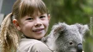 koala essay travels charley essay essays on economy essays on economy fly koala climbing tree by