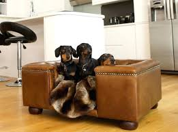 Cheap pet furniture Fancy Fancy Dog Beds Cheap Comfortable And Trendy Pet Furniture Ideas Luxury Leather Chalk Interiors Fancy Pet Beds Aaronatkinson