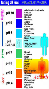 What Is Body's Ph ?-Indiahome Club