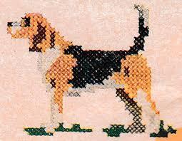 Beagle Chart Pattern Purple Kitty