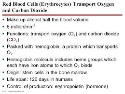 red blood cells erythrocytes transport oxygen and carbon dioxide