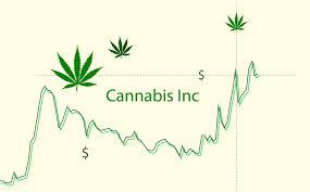 Hexo Cannabis Company Hexo Corp Hexo Receives An Analyst