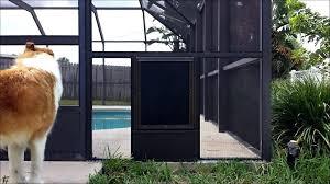 french patio door with dog door pet door installation sliding glass dog door sliding screen door