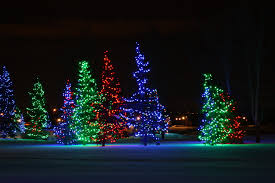 Outside Christmas Lights Christmas Lights On Trees Outside Quoteslol Roflcom Christmas