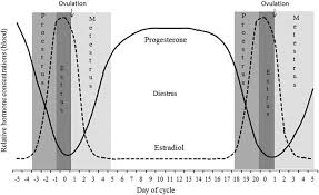 Review Behavioral Signs Of Estrus And The Potential Of